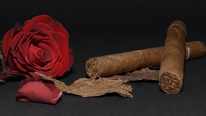 cigars and a rose
